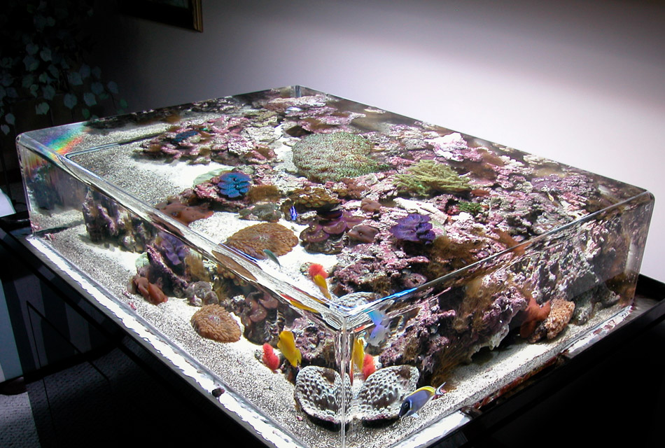 ZeroEdge Aquariums