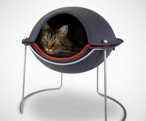 Pod Cat Beds